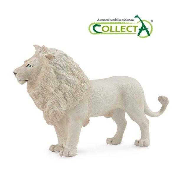 컬렉타 수컷 아프리카 백사자 동물 피규어 모형 상품이미지