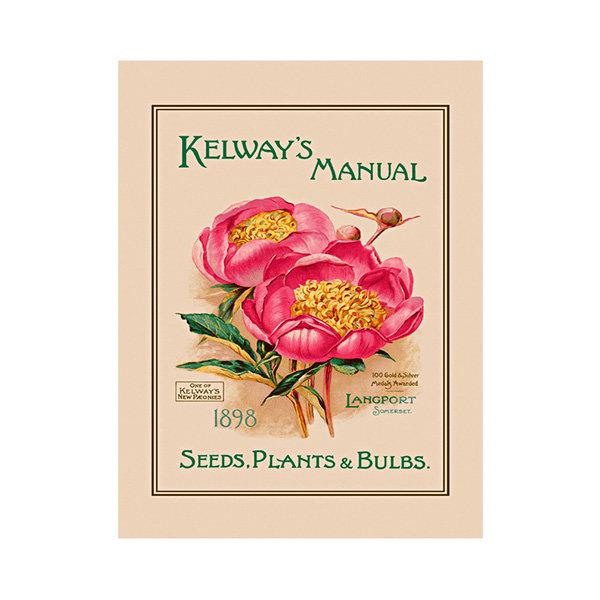 대구백화점 II관   울스터위버스 티타올(RHS KELWAYS MANUAL LINEN) 상품이미지