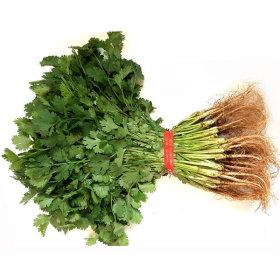 Korean coriander 1 bundle(within 300g)