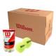 윌슨 캔볼 챔피온쉽 테니스용품 1박스(36캔) 테니스공 상품이미지
