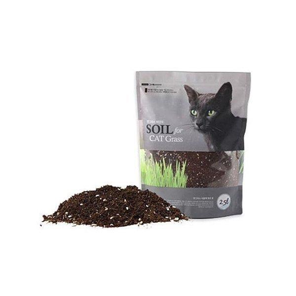 직접 고양이 풀 식물 배양토 2.5L 거름 흙 화분흙 상품이미지