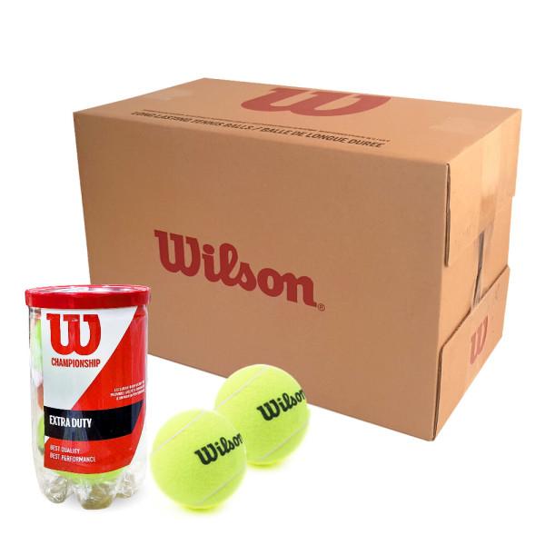 윌슨 캔볼 챔피온쉽 테니스공 1박스(36캔) 테니스볼 상품이미지