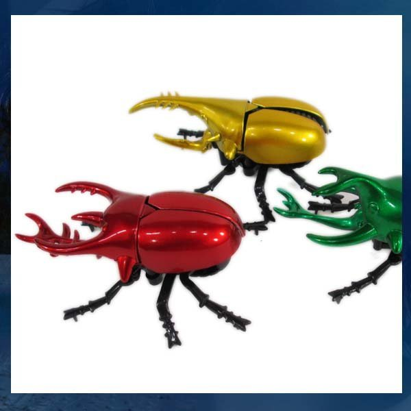 B015/사슴벌레/왕사슴벌레/넓적사슴벌레/장난감/곤충 상품이미지