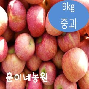 경북 안동 가을 사과 부사 5kg 10kg