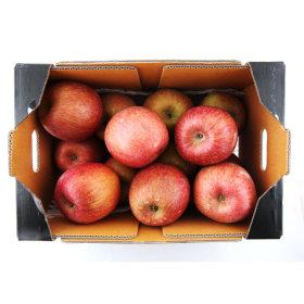 (전단상품)충주 사과 썬플러스 _3.5kg 박스