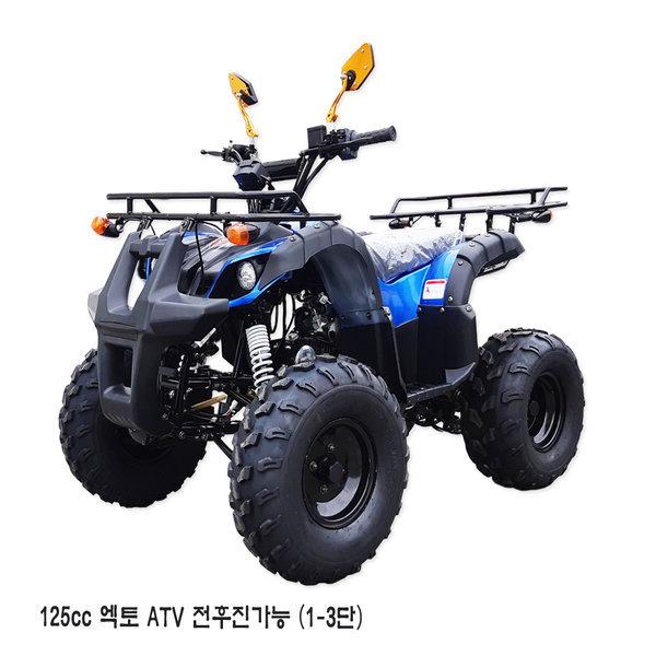 2019년 125cc ATV/사륜바이크/4륜오토바이 상품이미지