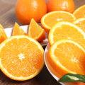 (12900원부터)퓨어스펙 블랙라벨 오렌지 40개 특가