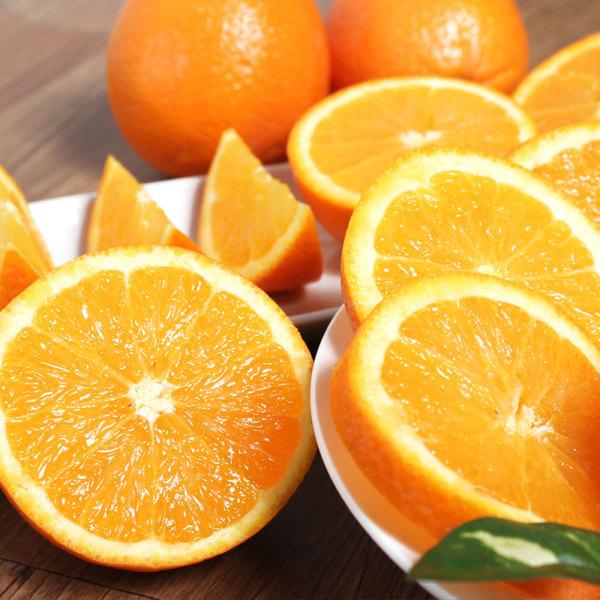 (한정특가)고당도 블랙라벨 오렌지 중과/중소과/대과 상품이미지