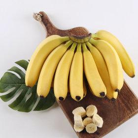 바나나 필리핀 _송이