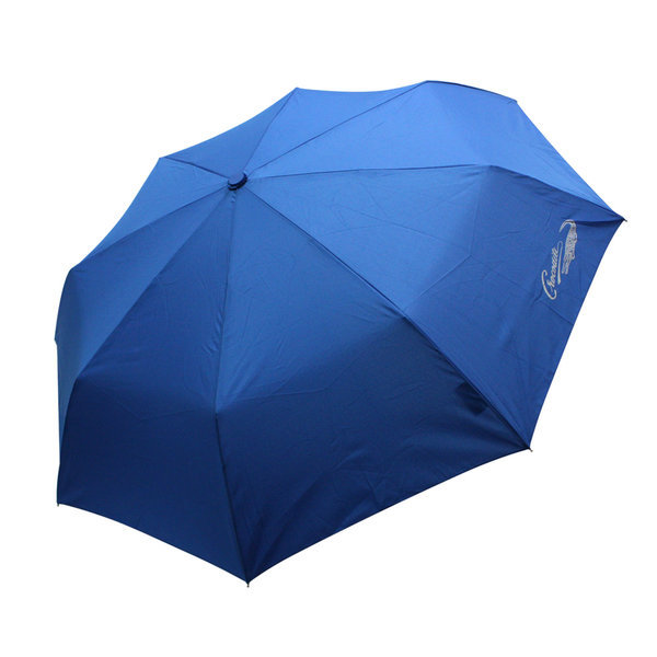 CD 본지 3단 자동우산/장우산/양산/돌 답례품/기념품 상품이미지