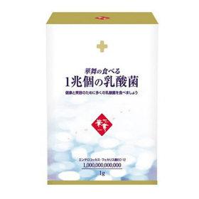 AFC 하나마이 1조마리 유산균 스틱 1g30포