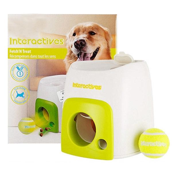 강아지 장난감 애견훈련 공놀이 애견용품 강아지용품 상품이미지