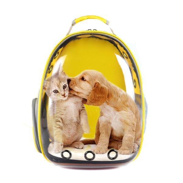 신형 고양이 강아지 투명 우주선백팩 상품이미지