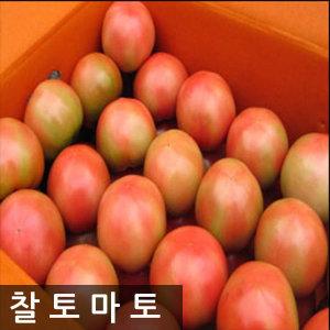 명품 찰토마토 10kg 특가찬스