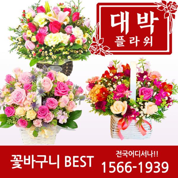 2019 꽃바구니 생일선물 기념일 축하선물 전국꽃배달 상품이미지