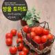 햇살아름 탱탱한 방울토마토 5kg-2번 기준 상품이미지