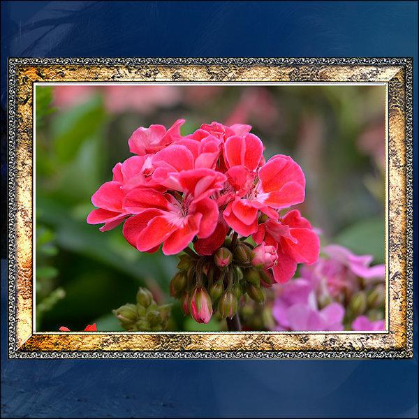 F019/풍경사진/벽걸이액자/꽃사진액자/사진액자 상품이미지