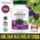 50배 고농축 캐나다 아로니아 120캡슐 캐나다 생산