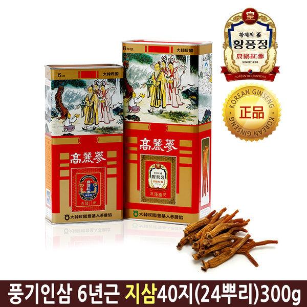 6년근 지삼 40지(24뿌리) 고려홍삼 뿌리홍삼 풍기인삼 상품이미지