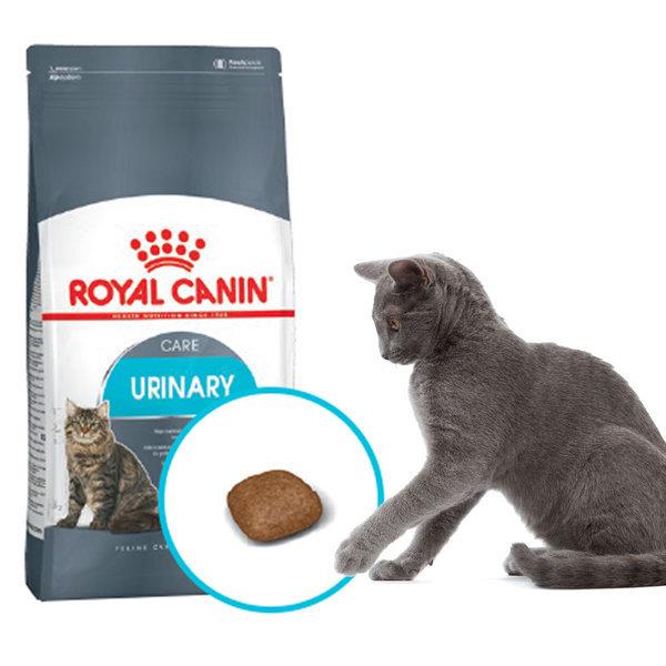 로얄캐닌 캣 유리너리 2kg/고양이 사료/용품 상품이미지