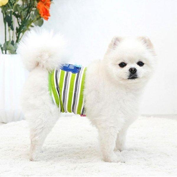패리스독 땡큐 베어 매너벨트 - 그린 숫컷 전용 벨트 상품이미지