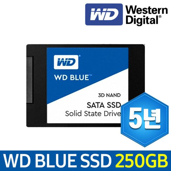 WD BLUE 3D 250G SSD PC 노트북 하드 상품이미지