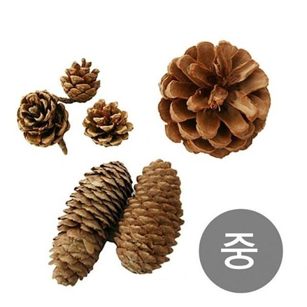 천연 솔방울 소나무 만들기 크리스마스 나무 공예 상품이미지