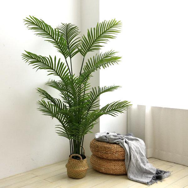 인조나무 조화나무 실내조경 아레카야자 170cm 상품이미지