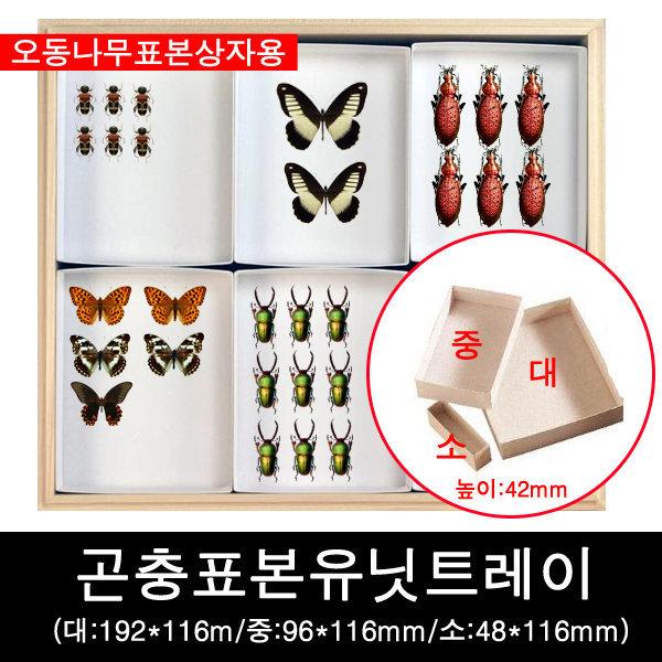 곤충표본유닛트레이/곤충표본분류트레이/표본분류판 상품이미지