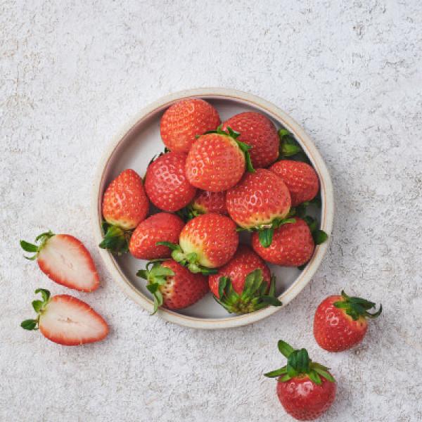 초L)한판딸기 500G/팩 상품이미지