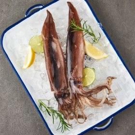초코오징어 (마리/200G내외/냉동)