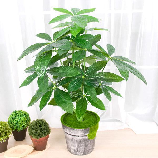 조화나무 인조나무 인테리어조화화분 파키라 야자나무 상품이미지