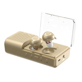 MB-W2000 블루투스이어폰 골드 듀얼DAC 충전케이스1+1