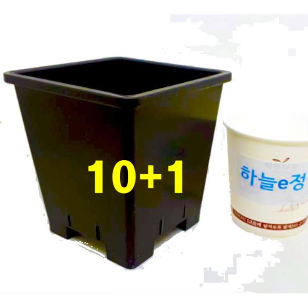 10cm 플분2호 4개 원예용플분 플라스틱화분 검정 상품이미지
