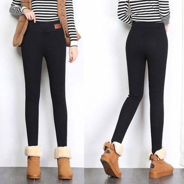 망원경마운트/CM4 상품이미지