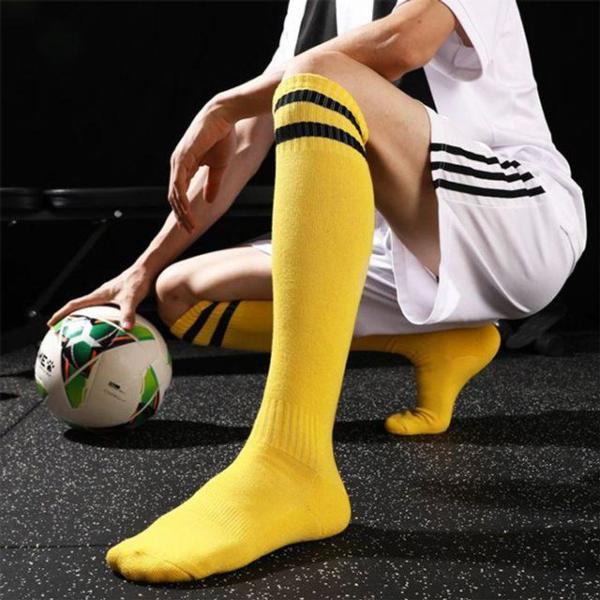 휴대용 독서대 small(173x255mm)/소설책용 상품이미지