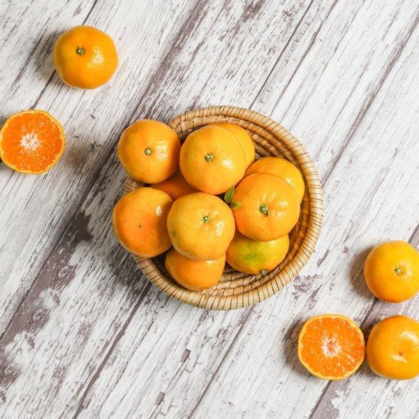 농부마음  새콤달콤 제주감귤 하우스귤 극조생귤 5kg(L-2L) 상품이미지