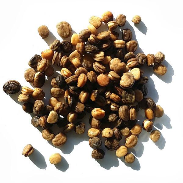 개갑인삼씨앗50g(약1000립)/노지재배/수경재배/개갑씨 상품이미지