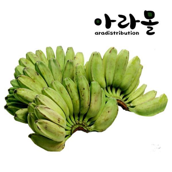 아라몰 그린 사바 바나나 (Green Saba Banana) 10kg 상품이미지