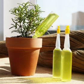 식물영양제 앰플영양제 원예화분비료 하이트그린10개입