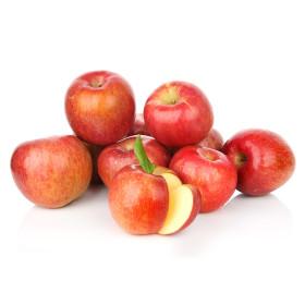 아침이슬 사과 가정용 햇 부사사과 간식 8KG (34-39과)