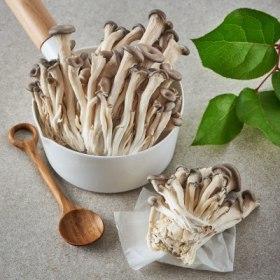 초이스엘 참느타리버섯 (200G/팩)