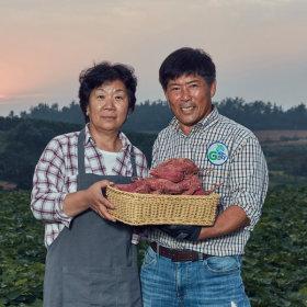 영암 꿀달고구마 무농약 3kg(상중) 30년고구마재배