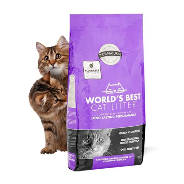 World s Best Cat Litter 월드베스트 고양이모래 3개 상품이미지