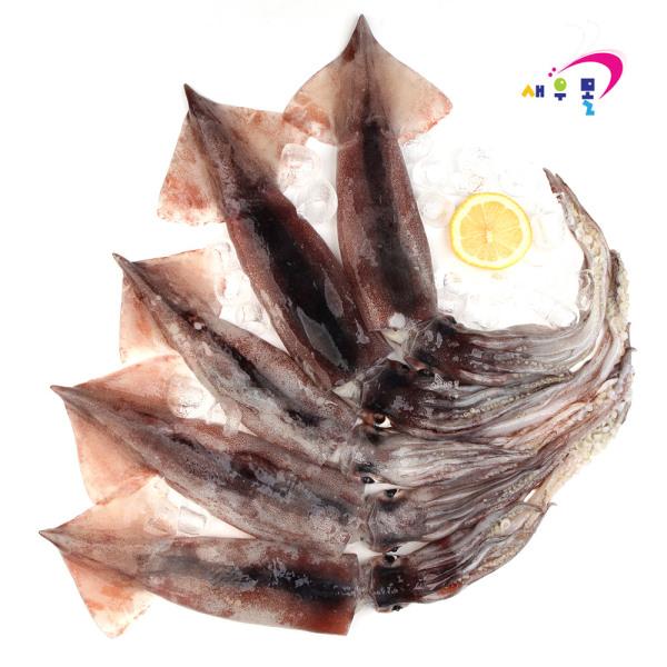 총알 오징어 특대 1kg 5-9미 국산초코로 만든 특A급 상품이미지