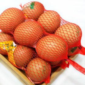 계란 망 구운란 구운계란 망란 2판(정품45gx60알)+소금