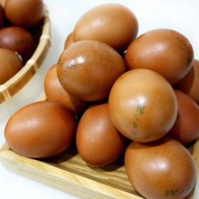 계란 구운란 구운계란 훈제란 2판(정품45gx60알)+소금