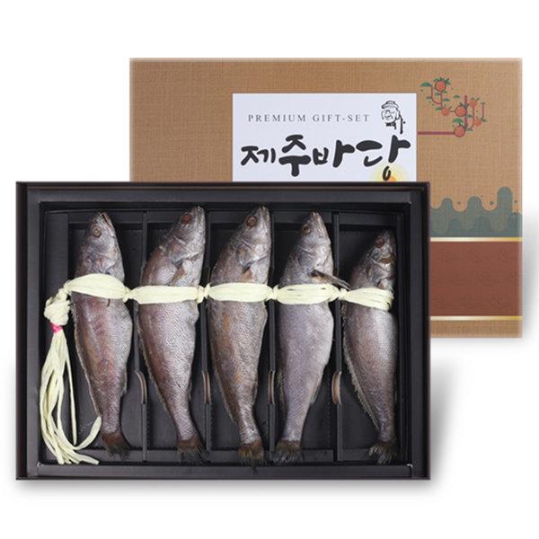 자연산 민어굴비 국내산 5미(30cm이상) /손질된 민어