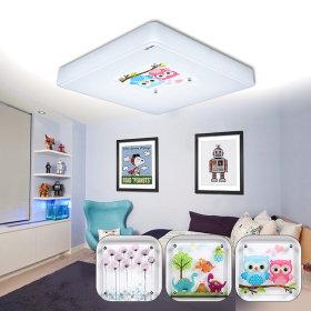 LED방등/조명/등기구 수채화/공룡/부엉이 방등 55W