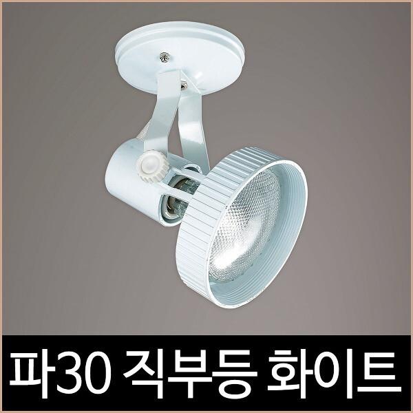 소노조명  파30 직부 화이트 백색 파삼공 PAR30 직부등 기구 LED 상품이미지